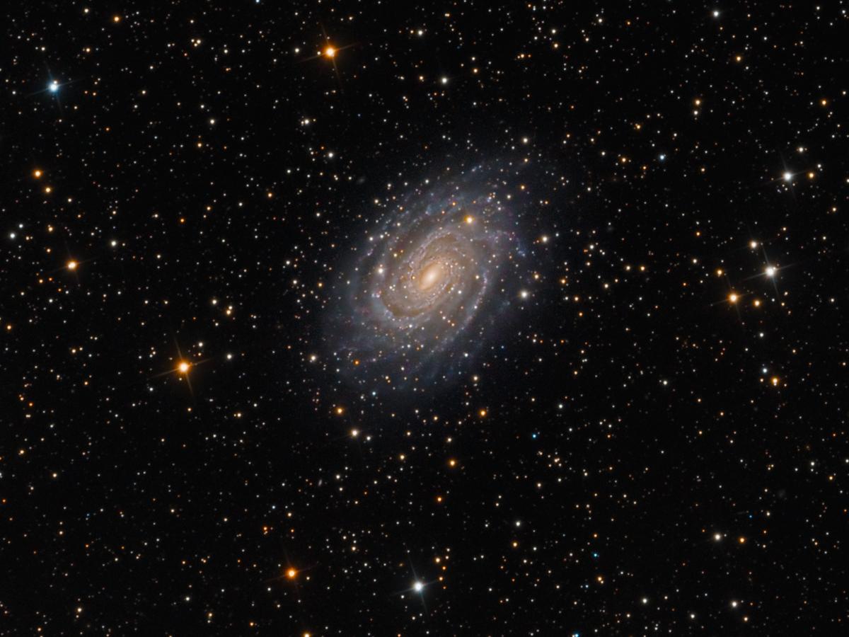 NGC 6384